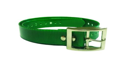 Green Plastic, Metal Buckle Collar